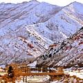 Winter In Grand Junction by Regina Strehl