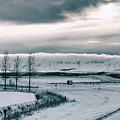 Winter In Iceland by Jean-Claude Ardila