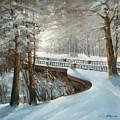 Winter In Pavlovsk Park by Mark Kremer