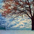 Winter In Peachland by Tara Turner