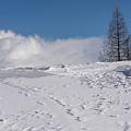 Winter In Sauris Di Sopra 2 by Wolfgang Stocker