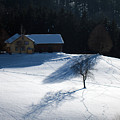 Winter In Switzerland - Tracks In The Snow by Susanne Van Hulst