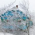 Winter In Village. Shchymel, 2014. by Andriy Maykovskyi