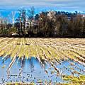Winter In Washington Fields by Clayton Bruster