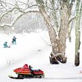Winter by Jill Wellington