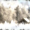 Winter  by Julie Lueders