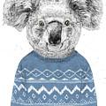 Winter Koala by Balazs Solti