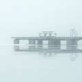 Winter Lake by Richard Larson