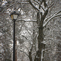 Winter Lamp Post by Idaho Scenic Images Linda Lantzy