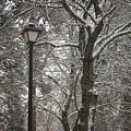 Winter Lamp Post by Idaho Scenic Images Linda Lantzy