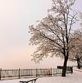 Winter Landscape 1 by Marcin Rogozinski