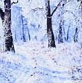 Winter Landscape 2 by Charmaine Zoe
