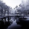 Winter Landscape  by Edward Myers