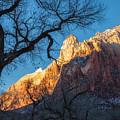 winter Light 2 by Jonathan Nguyen
