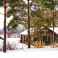 Winter Log Cabin 3 - Paint by Steve Harrington