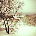 Winter Loneliness by Jenny Rainbow