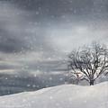 Winter by Lourry Legarde