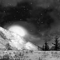 Winter Magic In Black And White by Vicki Lea Eggen