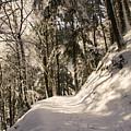 Winter Magic by Mirko Chianucci