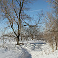 Winter Meander by Dylan Punke