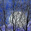 Winter Moon by John Selmer Sr