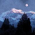 Winter Moon by Roger Bushman