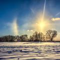 Winter Morn In Minnesota by Rikk Flohr