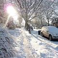 Winter Morning by Kate  Leikin