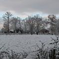 Winter Morning by Rose Cottage Ltd
