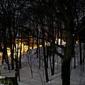 Winter Night by Donna Fonseca Newton