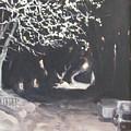 Winter Night by Donna Lange