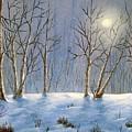 Winter Night by Jerry Walker