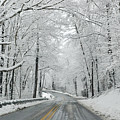 Winter On Buffalo Road by Philip LeVee
