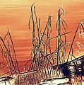 Winter Orange by Bob Orsillo