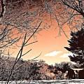 Winter Pastel by Elizabeth Tillar