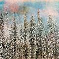 Winter Pastels by Tara Turner