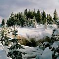 Winter Path by Martin Massari