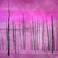 Winter Pink  7913pink by Karen Celella