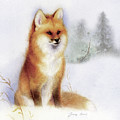 Winter Red Fox by Tracy Herrmann