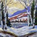 Winter Reflections by Richard T Pranke