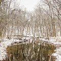 Winter Reflections by Susan Grove