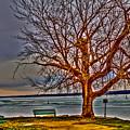 Winter Retreat by William Norton