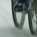 Winter Ride by Linda Shafer