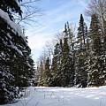 Winter Road 2 by Larry Ricker