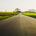 Winter Road Ground Level by Pati Photography