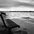 Winter Scene  by Cristina Stefan