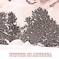 Winter Scene In The Colorado Rockies by A Gurmankin