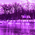Winter Scene In Violet by By Way of Karma