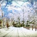 Winter Scene by Michael Forte