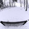 Winter Seat 2 by Jouko Lehto